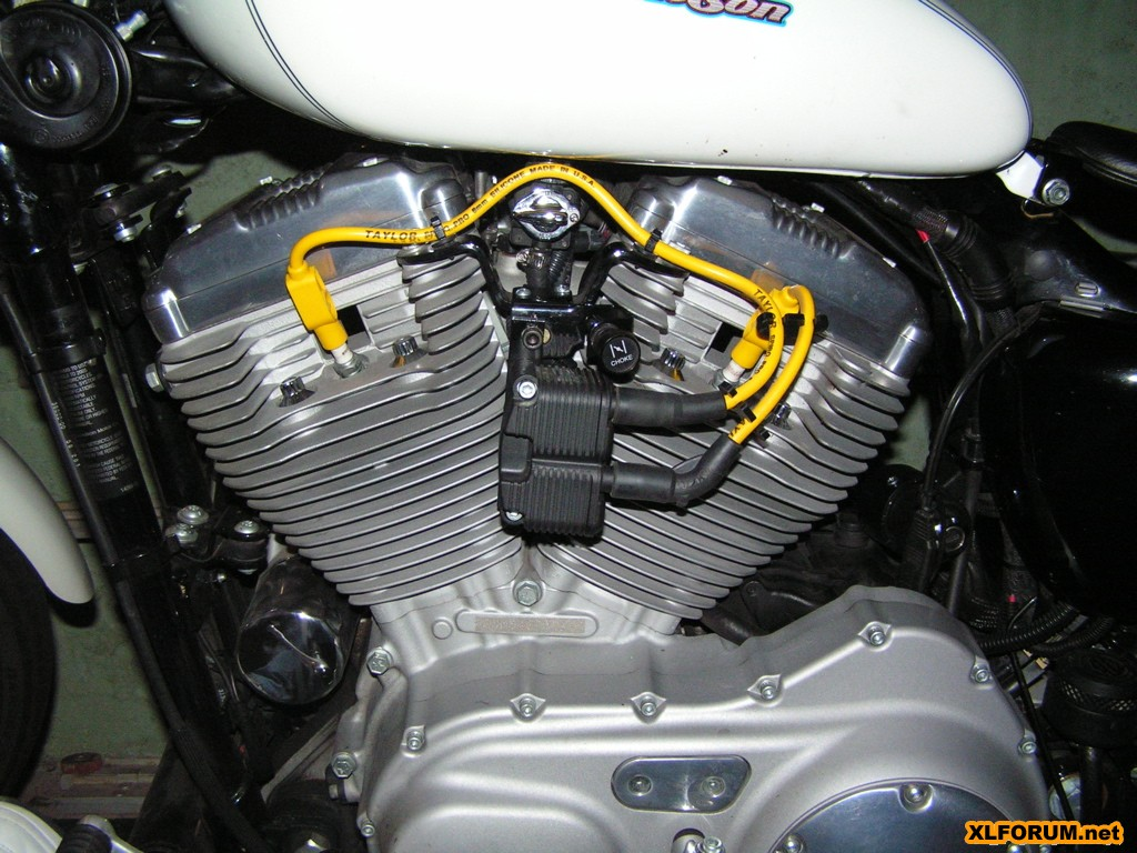 Relocated My Coil And It Made Me Horny The Sportster Buell Badlands Motorcycle Products Wiring Diagram Forum Xlforum